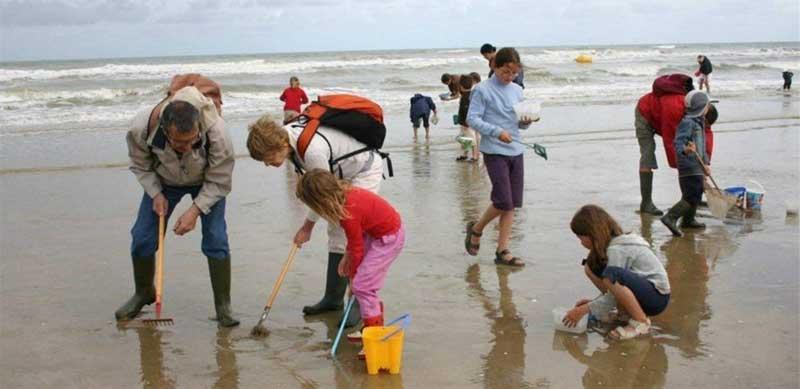 Le camping les jardins de la mer organise le 20/07 et le 10/08 une initiation découverte à la pêche à pied pour enfants.